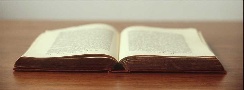 Fragmentos de libros interesantes – La ladrona de libros