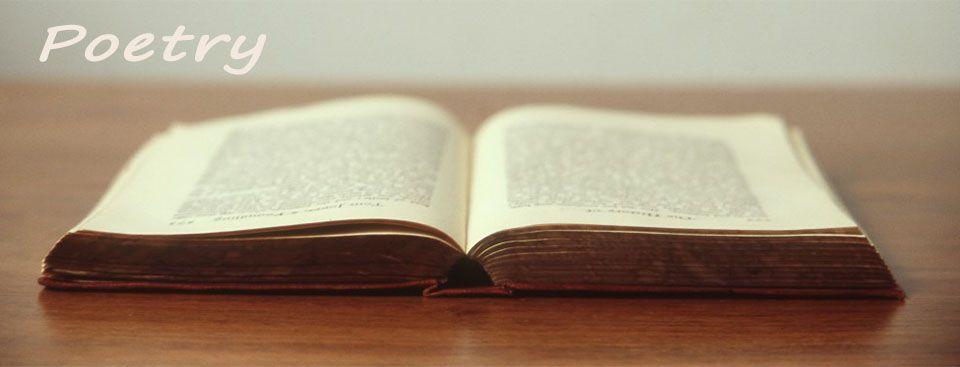 Libros de poemas – Sagrario Torres