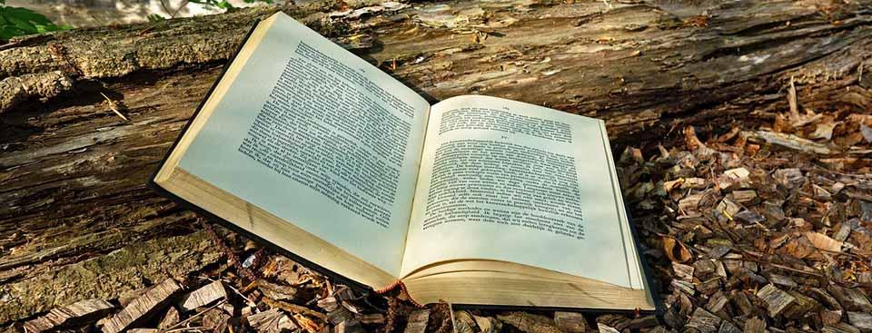 Palabras del Sol y otros poemas