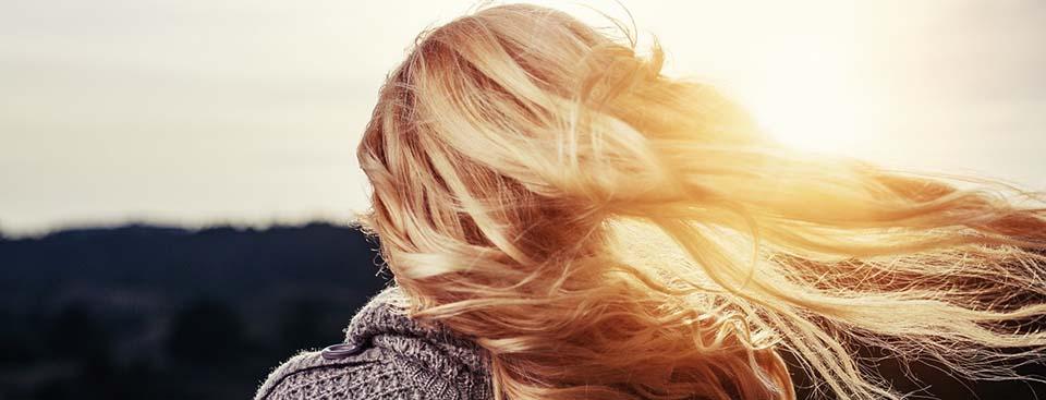 Poemas con aroma a viento