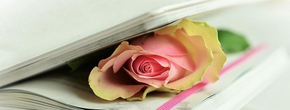 Poema homenaje para recordar a una poetisa